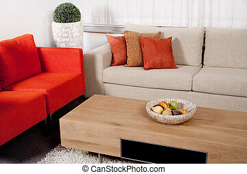 Modern furniture design with couches in two colors in living...