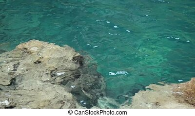 Crystal clear surf, the view through the water, depth and...