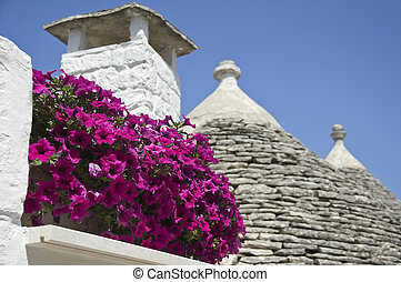 Alberobello,  trulli,  Apulia