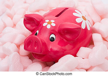 Protecting your money - A piggy bank being protected by...