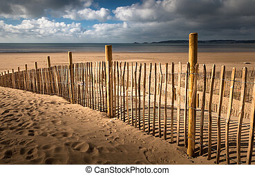 Swansea Bay dune defence - Stabilizing dunes by planting...