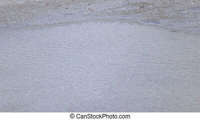 Ripples on water from wind - On water puddle ripples from...