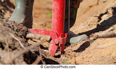 Man planting tree sprout with special equipment - Worker...