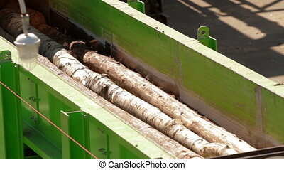 Lumber factory Conveyors of logs sorting machine -...