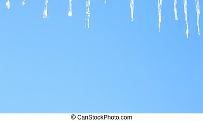icicles on a background of blue sky - Frozen Icicles...