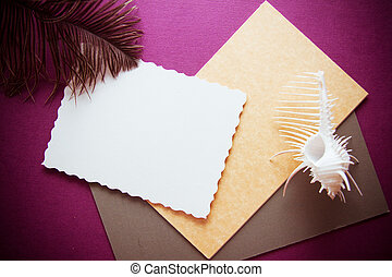 paper background with shell