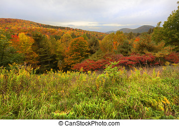 Adirondack Mountains - Colorful trees and mountain in the...