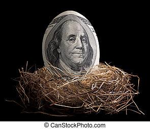 Nest Egg - A one hundred dollar bill is shaped like an egg...