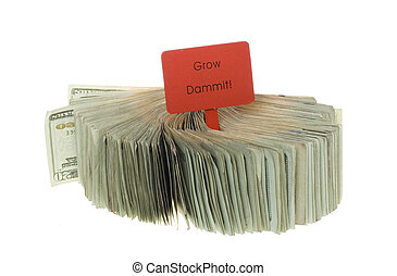 Twenty Dollar Bills fanned out with Wooden Sign