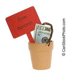 Twenty Dollar Bill in a Clay pot
