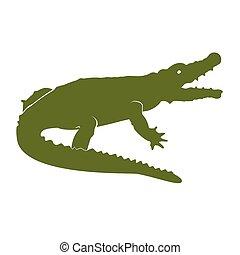 Green crocodile vector - Vector illustration green crocodile...