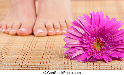 Chiropody - Beautiful well-groomed feet with pedicure and...