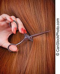 Brown hair - Healthy long brown hair and scissors