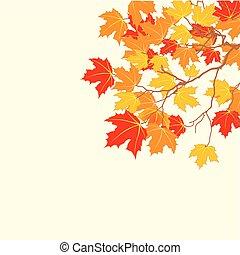 automne, feuilles, fond