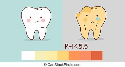 healthy teeth and tooth decay