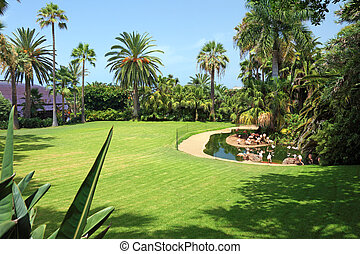 Beautiful park with flamingo on Tenerife island, Canary