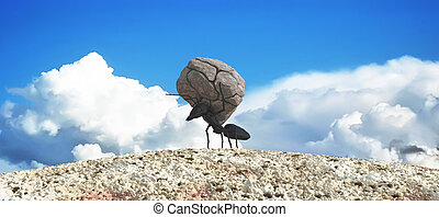 concept work, team of ants - concept work, ant moving stone