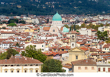 view of Florence city with Great Synagogue