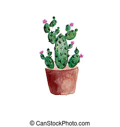Watercolor cactus illustration with pink flowers