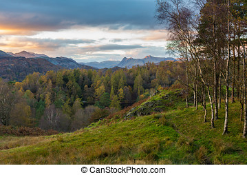 View of Langdale Pikes from Tarn Hows in Cumbria, UK - View...