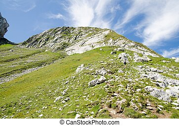 Alps - the beautiful Landscape in the Alps