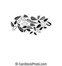 Illustration of different black seeds