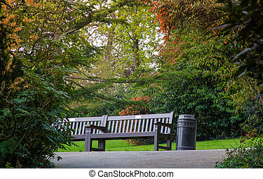 Empty bench in a park in spring