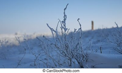 frozen grass next to the highway route travel movement of...