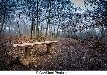 Empty bench in a forest - Empty bench in the misty forest at...