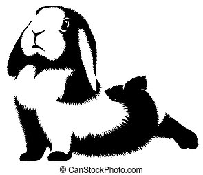 black and white linear paint draw rabbit illustration -...