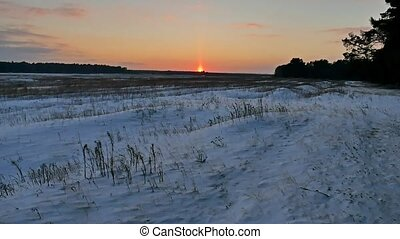 winter landscape with snow nature field of dry grass late in...