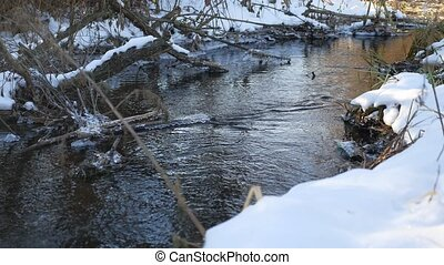 Forest river flowing water late winter melted ice nature...