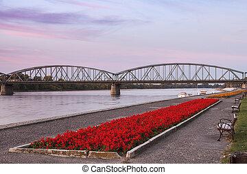 Bridge in Torun