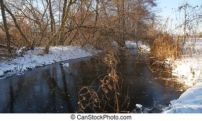 winter river landscape in forest frozen water nature ice dry...