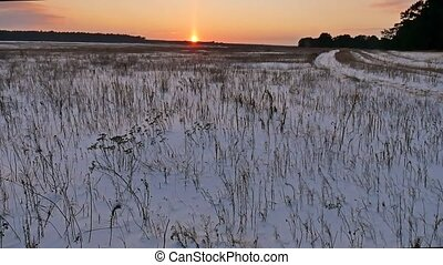 winter landscape with snow field of dry grass late in the...
