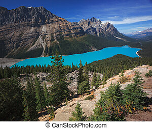 Peyto Lake in Banff Canada