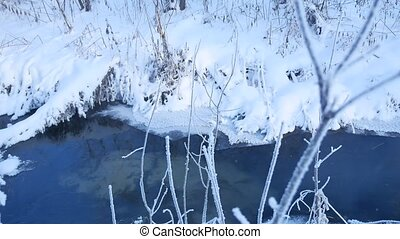 forest stream in winter snow nature grass and tree beautiful...