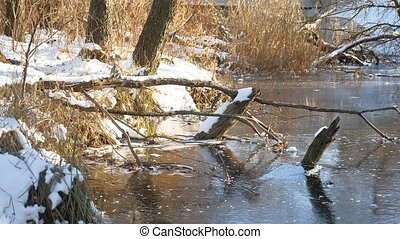 winter landscape River in forest frozen water nature ice