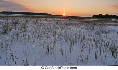 winter landscape with snow field of dry grass late in nature...
