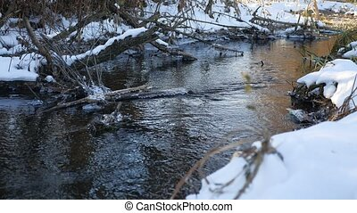 Forest river flowing water late winter a nature melted ice...