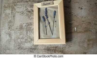 lavander flowers in picture frame on wall interior