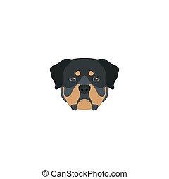 Head rottweiler dog. Vector illustration.