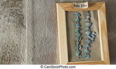 Babu blue leaves in picture frame on wall interior