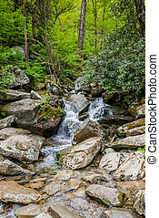 Creek Runs Through Rock in Smokies