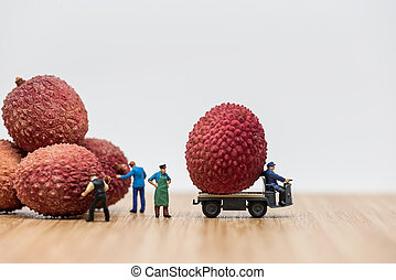 Lychees on truck. Delivery concept