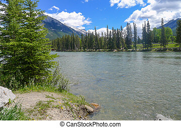 Bow River in Banff - Bow River running around and through...