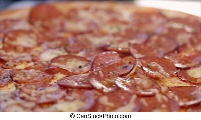 Pizza with salami close-up. The camera moves along and stops...