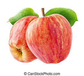 Two isolated red apples - Isolated apples. Two red striped...
