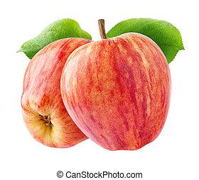 isolado, maçãs, vermelho, dois