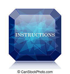 Instructions icon, blue website button on white background.